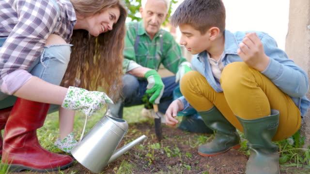 family gardening - watering can stock videos & royalty-free footage