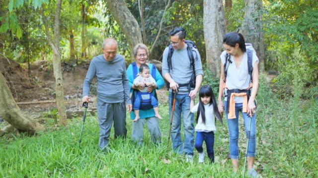 vídeos y material grabado en eventos de stock de familia, felicidad, generación, vacaciones y concepto de personas - senderismo familiar de varias generaciones en un bosque, - picnic