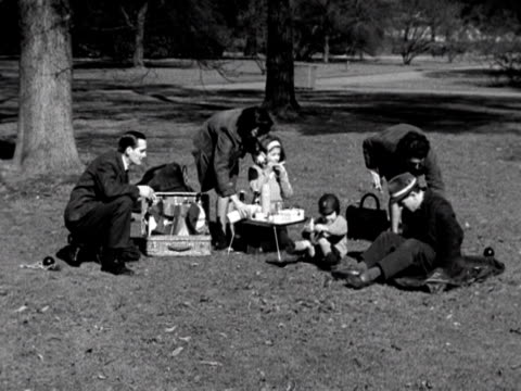 a family have a picnic in a public park at spring time 1963 - hamper stock videos & royalty-free footage