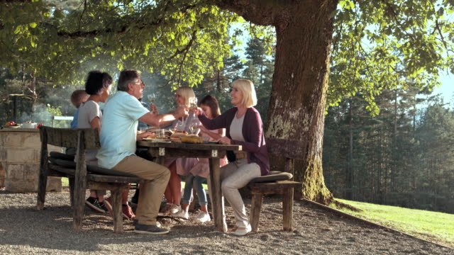 family having a barbecue on a sunny day - large family stock videos & royalty-free footage