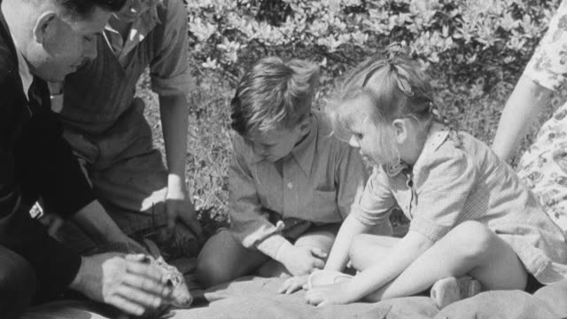vídeos y material grabado en eventos de stock de 1950 montage family having a picnic, children petting and playing with a rabbit / united kingdom - familia con cuatro hijos