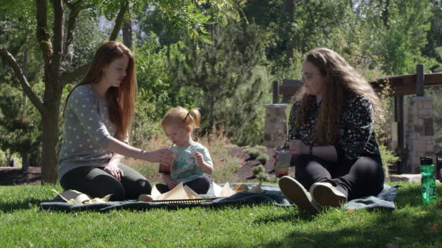 family having a picnic in the grass at a park - picnic stock videos & royalty-free footage