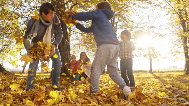 family having fun throwing autumn leaves - family with three children stock videos & royalty-free footage
