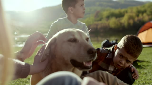 vídeos de stock e filmes b-roll de family having fun with their dog on vacation by the lake - acampar