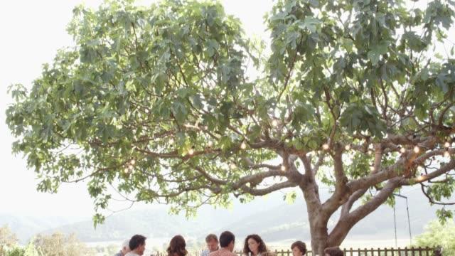 familie beim mittagessen unter baum im hof - geschwister stock-videos und b-roll-filmmaterial