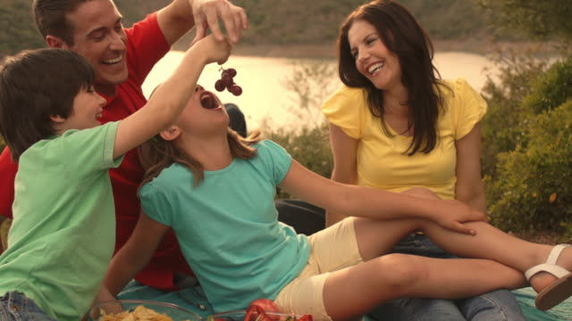 family having picnic by lake in countryside. - grape stock videos & royalty-free footage