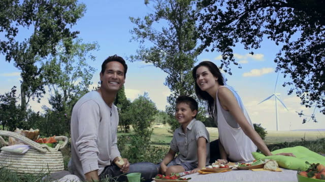 ms pan family having picnic in wind farm / toulouse, midi-pyrenees, france - cibo biologico video stock e b–roll