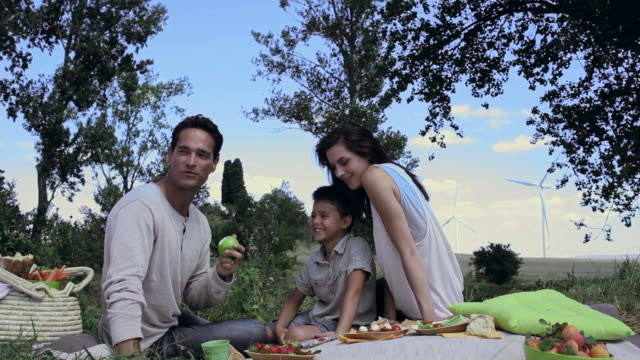 MS PAN Family having picnic in wind farm / Toulouse, Midi-Pyrenees, France