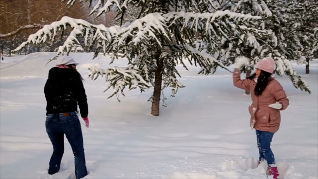 Family having snowball fight in mountain during winter holiday.