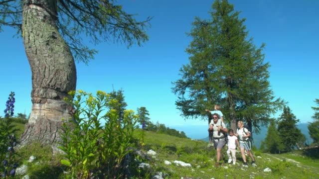 vidéos et rushes de hd: famille de randonnée dans les montagnes - chaîne de montagnes