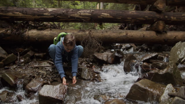 family hiking in nature, near stream - stream body of water stock videos & royalty-free footage