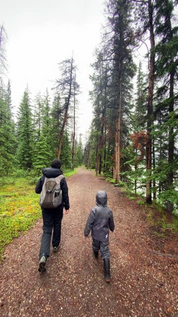 雨の日の家族ハイキング、ジャスパー、カナダ - ジャスパー国立公園点の映像素材/bロール
