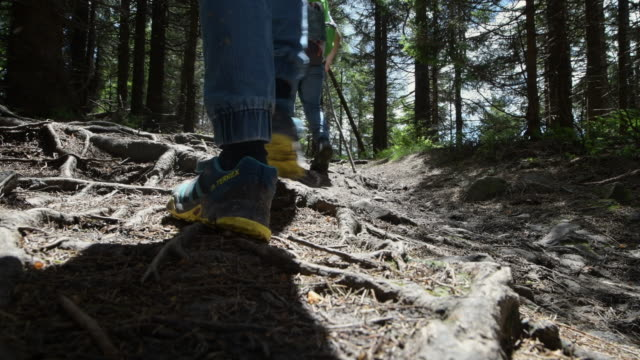 stockvideo's en b-roll-footage met het wandelen van de familie op rotsachtig bergpad - tegenspoed