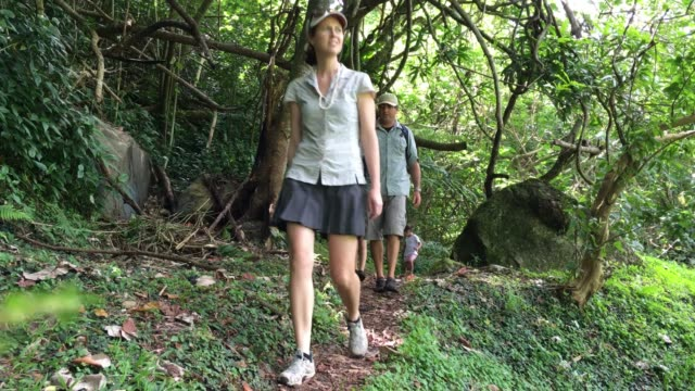 family hiking the cross island track in the rain forest of a tropical pacific island - cook islands stock videos & royalty-free footage