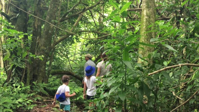 Family hiking the Cross Island track in the rain forest of Rarotonga, Cook Islands.
