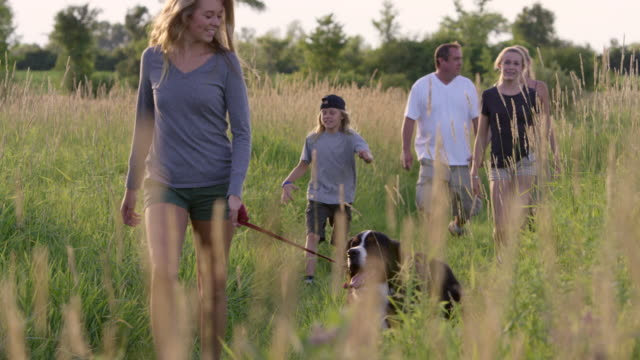 family hiking with dog - hiking stock videos & royalty-free footage