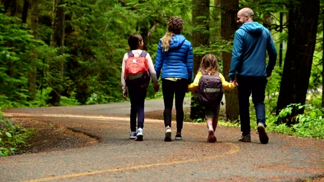 family holding hands while walking in forest - british columbia stock videos & royalty-free footage