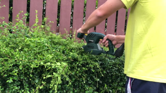 vídeos de stock e filmes b-roll de family housework together , cutting tree with electric saw - terreno