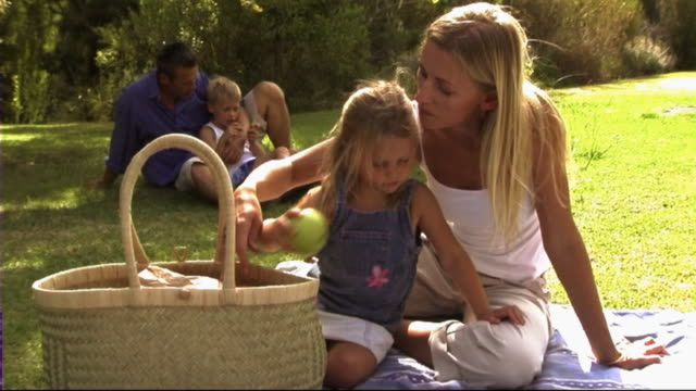 family in park having picnic - picnic stock videos & royalty-free footage