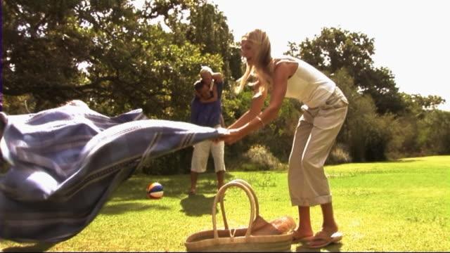 vídeos y material grabado en eventos de stock de family in park with picnic - cesta de picnic