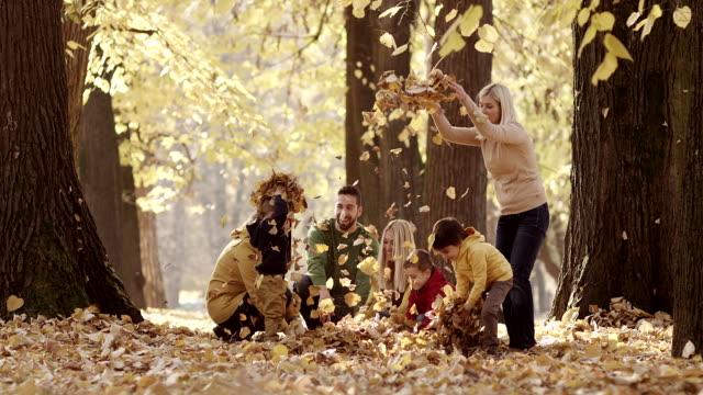 familie im park - geschwister stock-videos und b-roll-filmmaterial