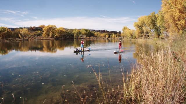 stockvideo's en b-roll-footage met een familie (een veertig-iets man, een veertig-iets vrouw en een vier-jarige jongen) ontspannen stand-up paddleboards (sup) in een meer in het najaar onder een zonnige hemel in westerse colorado - peddelen