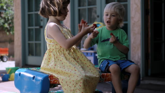 Family Life - Cute young girl and boy sharing raspberries eachother and eating / Los Angeles, California, United state