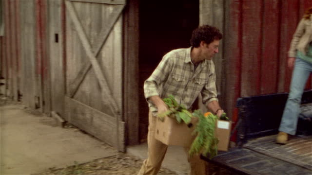 Family loading fresh produce onto back of pick-up truck on family farm