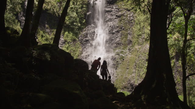 family looking at a waterfall - insel tahiti stock-videos und b-roll-filmmaterial