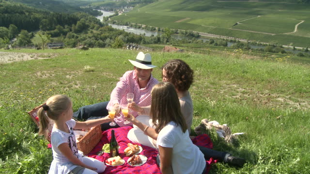 vidéos et rushes de ms tu family making picnic at mosel valley / nittel, rhineland-palatinate, germany                                       - panier pique nique