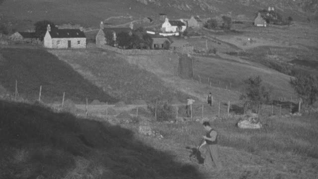 1944 montage family of crofters gathering hay from a steep hillside using scythes and pitchforks / archriesgill, scotland, united kingdom - 干草用熊手点の映像素材/bロール