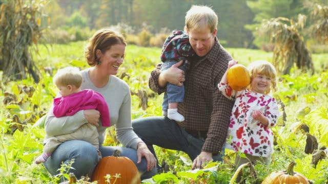 ms family of five picking pumpkins on field, manchester, vermont, usa - familie mit drei kindern stock-videos und b-roll-filmmaterial