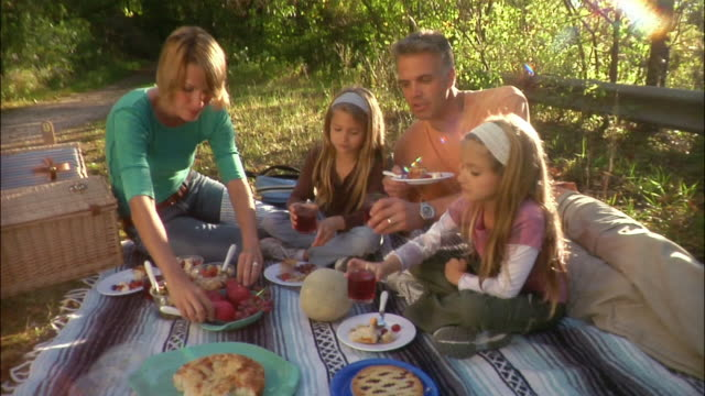 family of four having picnic in rural area and toasting - picnic stock videos & royalty-free footage