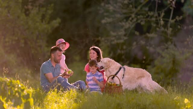 自然の中でピクニックをしている犬と4人家族。 - ピクニック点の映像素材/bロール