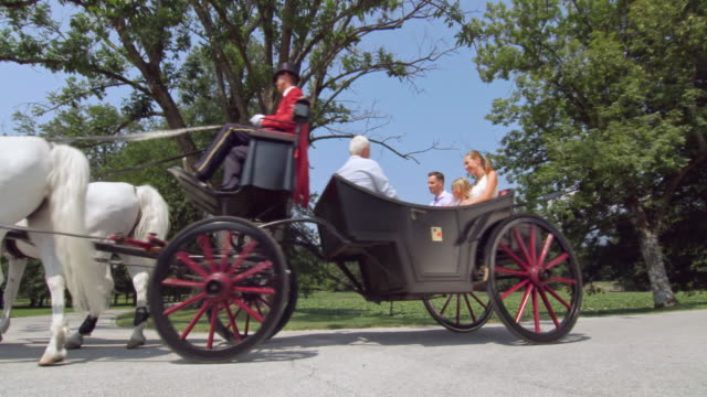 ds family on a horse drawn carriage ride through park - tourism stock videos & royalty-free footage