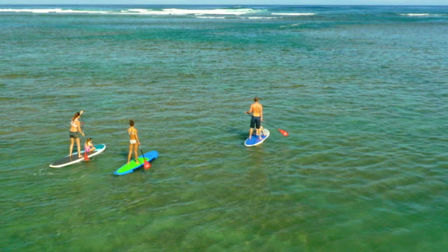 family on a tropical beach vacation to hawaii - water sport stock videos and b-roll footage