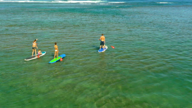 family on a tropical beach vacation to hawaii - fiji stock videos & royalty-free footage