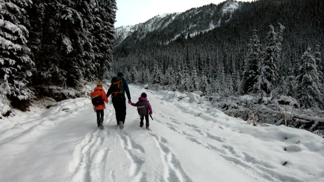 family on a winter hike - hiking stock videos & royalty-free footage