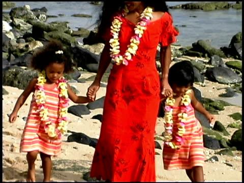 stockvideo's en b-roll-footage met family on beach - guirlande