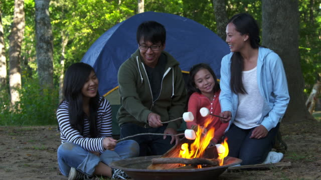 ws family on camping vacation, roasting marshmallows over camp fire / richmond, virginia, united states - テント点の映像素材/bロール