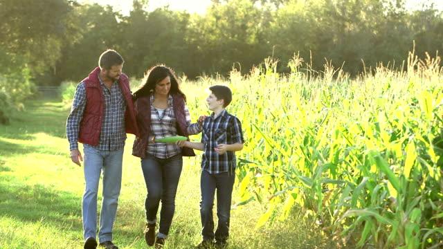 Familie op de boerderij, wandelen door het gebied van gewassen