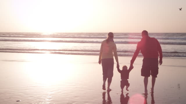 family on the beach - parent stock videos and b-roll footage