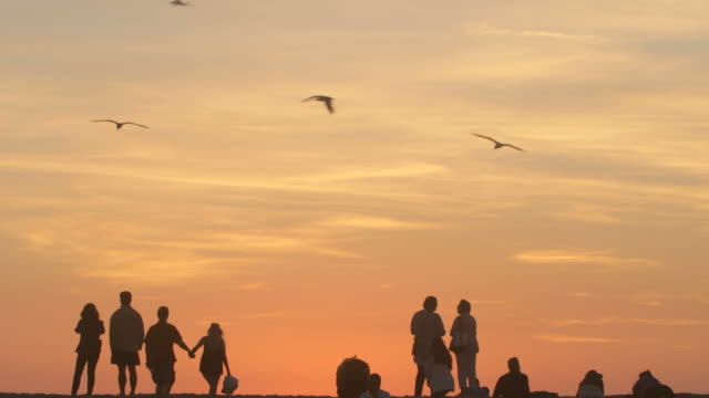 Family, Parents, Couples, Enjoying Sunset Over Horizon