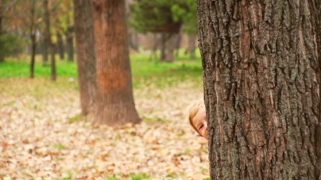 vídeos y material grabado en eventos de stock de familia echar un vistazo a tree - echar un vistazo