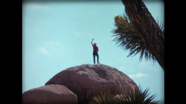 1971 family picnics at joshua tree national monument - cactus video stock e b–roll