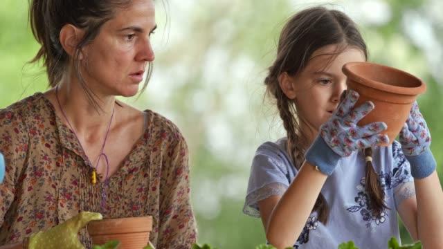 vídeos y material grabado en eventos de stock de familia plantando unas flores en el jardín. - jardinería