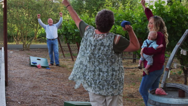 family playing bean bag toss beside vineyard - bean bag stock videos & royalty-free footage