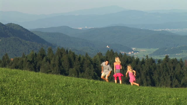 hd: family playing on a meadow - slovenia meadow stock videos & royalty-free footage