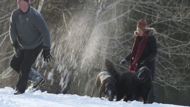 WS PAN Family playing together in snow / Rutland,Vermont, USA