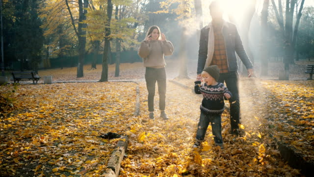 family  playing with little son in park in autumn - leaf stock videos & royalty-free footage